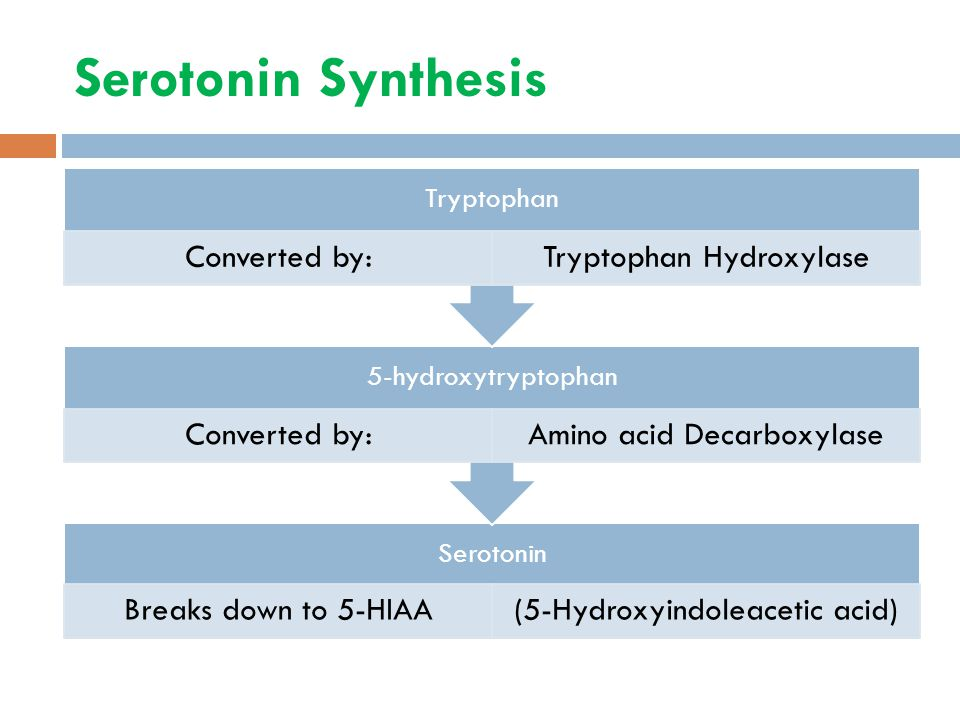 Serotonin Synthesis Serotonin Breaks down to 5-HIAA(5-Hydroxyindoleacetic acid) 5-hydroxytryptophan Converted by:Amino acid Decarboxylase Tryptophan Converted by:Tryptophan Hydroxylase