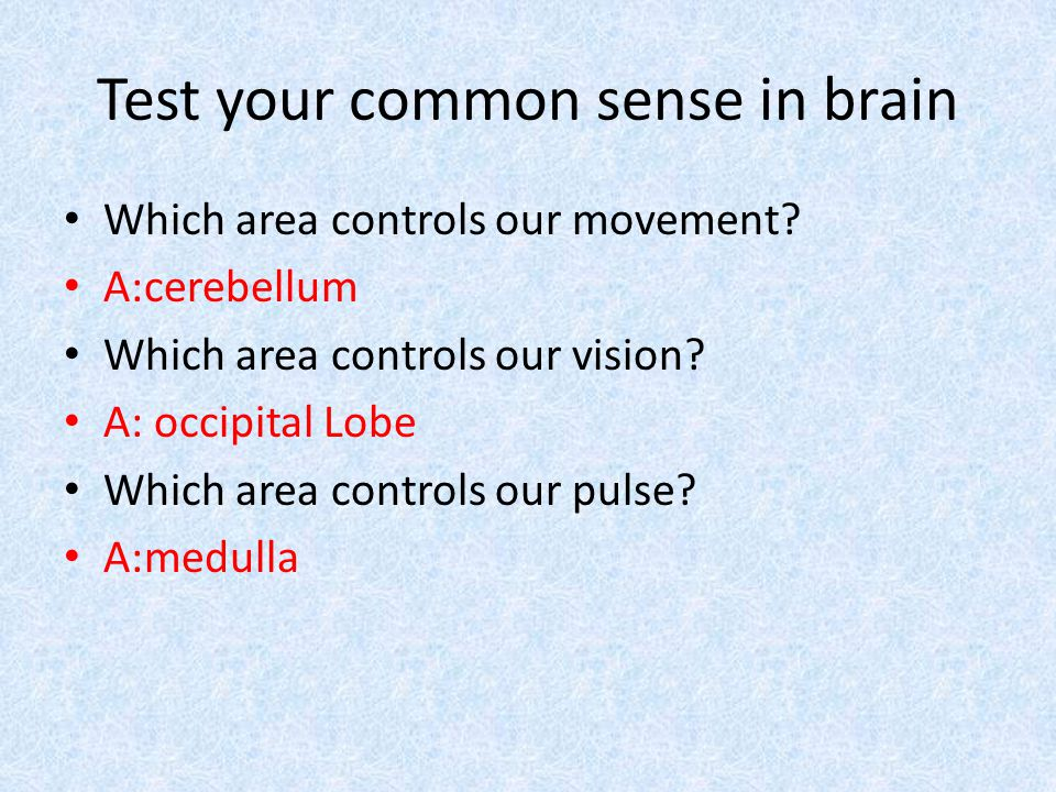 Test your common sense in brain Which area controls our movement.