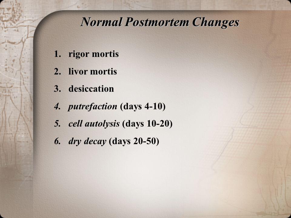 Normal Postmortem Changes 1.rigor mortis 2.livor mortis 3.desiccation 4.putrefaction (days 4-10) 5.cell autolysis (days 10-20) 6.dry decay (days 20-50)