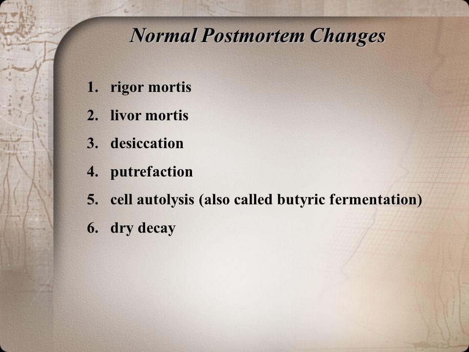 Normal Postmortem Changes 1.rigor mortis 2.livor mortis 3.desiccation 4.putrefaction 5.cell autolysis (also called butyric fermentation) 6.dry decay
