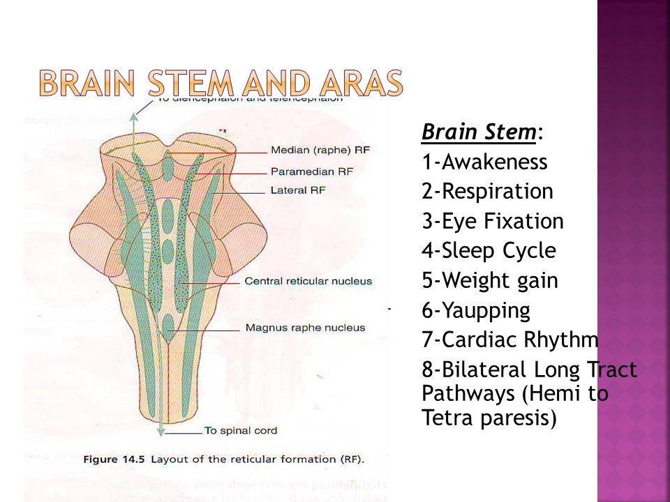  Aura in Migraine Headache  Intracranial Hemorrahges  Carotid Dissection  Neuralgias  Basialr Type Migraine  GCA
