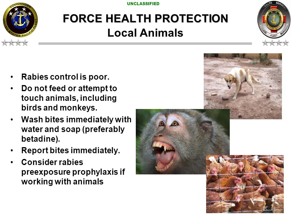 UNCLASSIFIED FORCE HEALTH PROTECTION Rabies control is poor.