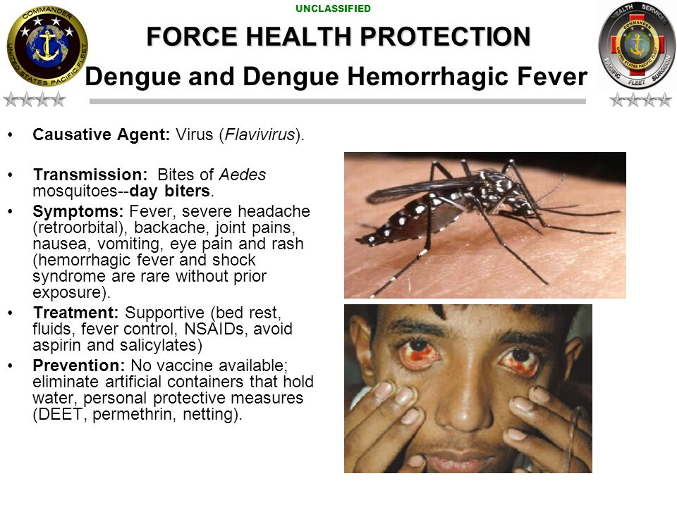 UNCLASSIFIED Dengue Map FORCE HEALTH PROTECTION