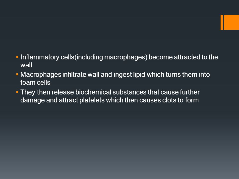  Inflammatory cells(including macrophages) become attracted to the wall  Macrophages infiltrate wall and ingest lipid which turns them into foam cel