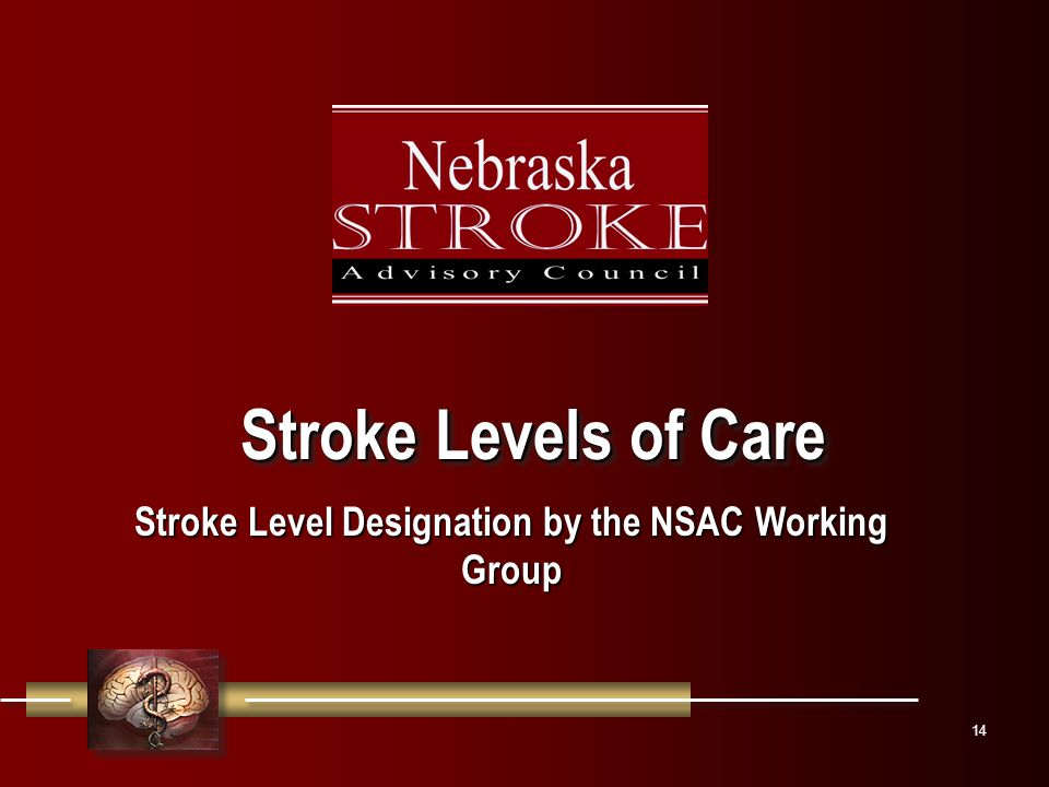 14 Stroke Levels of Care Stroke Level Designation by the NSAC Working Group