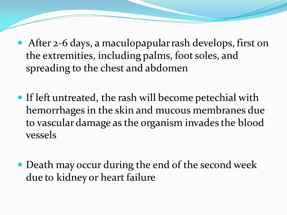 After 2-6 days, a maculopapular rash develops, first on the extremities, including palms, foot soles, and spreading to the chest and abdomen If left u