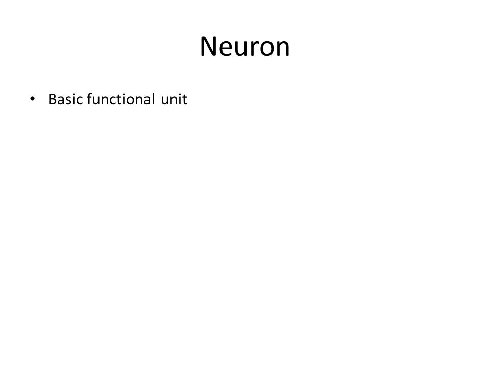 Neuron Basic functional unit