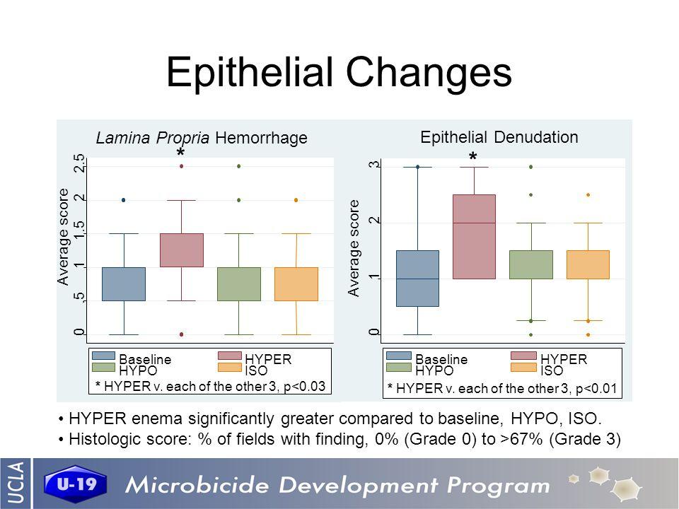Epithelial Changes 0.5 1 1.5 2 2.5 BaselineHYPER HYPOISO Average score * * HYPER v.