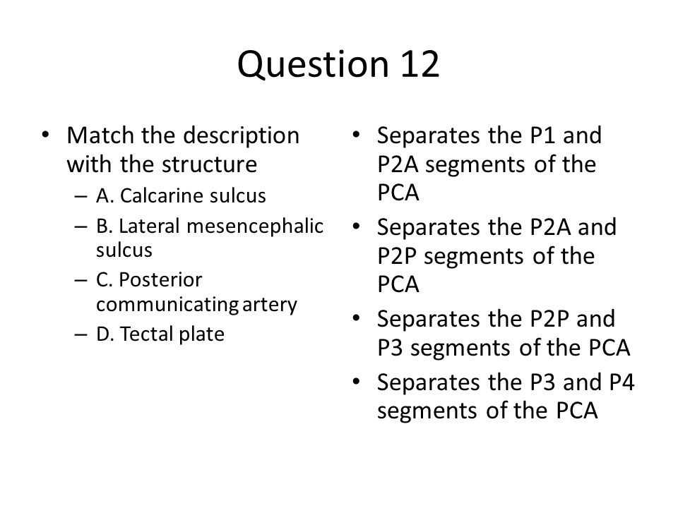 Question 12 Match the description with the structure – A.