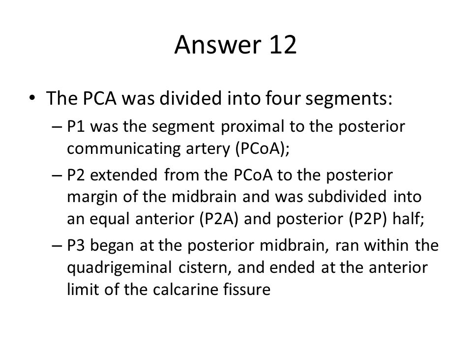 Answer 12 The PCA was divided into four segments: – P1 was the segment proximal to the posterior communicating artery (PCoA); – P2 extended from the PCoA to the posterior margin of the midbrain and was subdivided into an equal anterior (P2A) and posterior (P2P) half; – P3 began at the posterior midbrain, ran within the quadrigeminal cistern, and ended at the anterior limit of the calcarine fissure