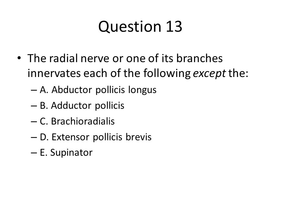 Question 13 The radial nerve or one of its branches innervates each of the following except the: – A.