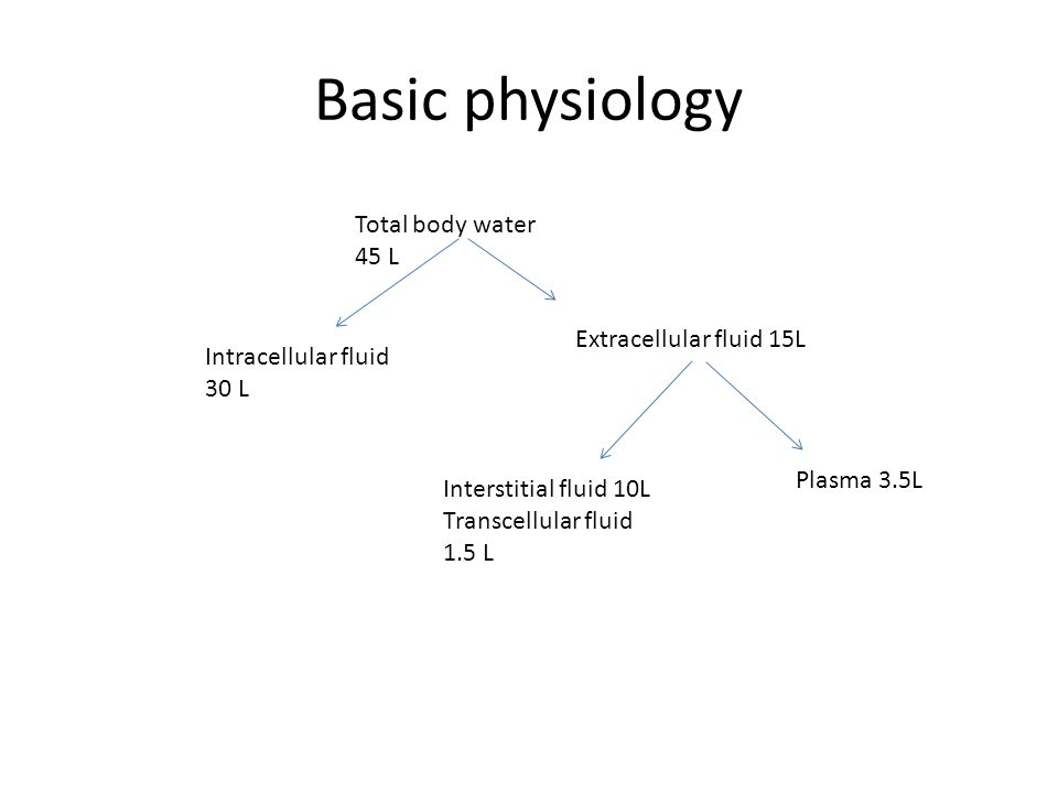 Basic physiology Total body water 45 L Extracellular fluid 15L Plasma 3.5L Intracellular fluid 30 L Interstitial fluid 10L Transcellular fluid 1.5 L