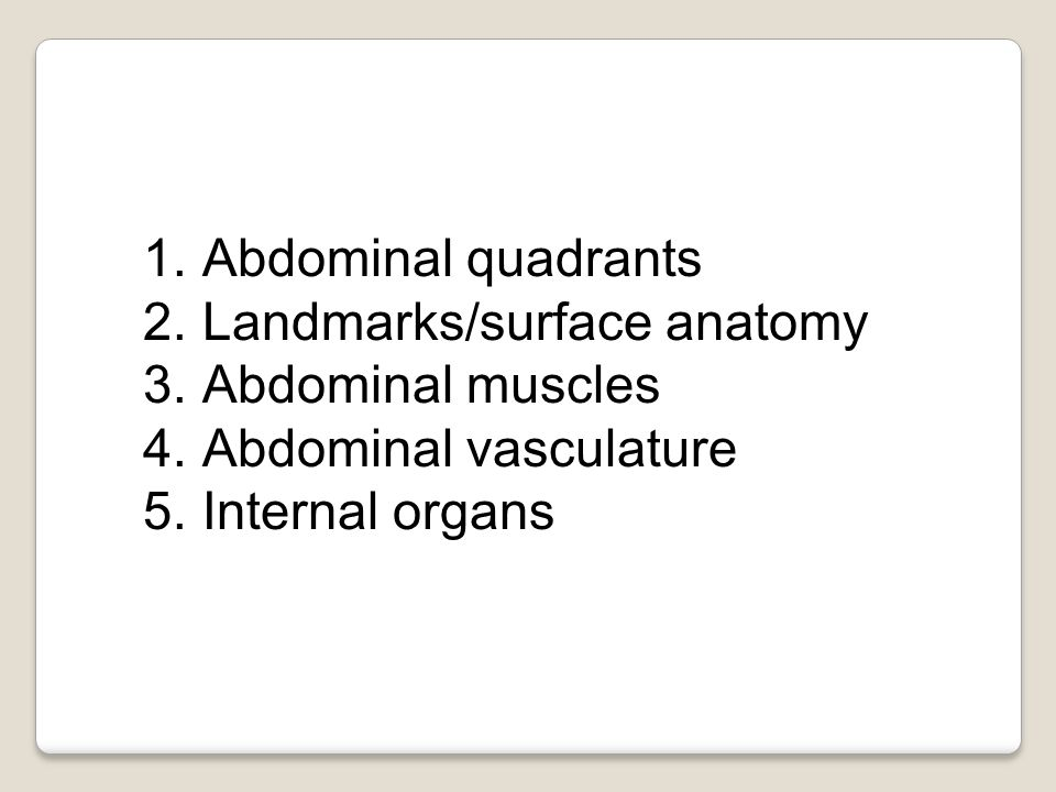 1.Abdominal quadrants 2.Landmarks/surface anatomy 3.Abdominal muscles 4.Abdominal vasculature 5.Internal organs