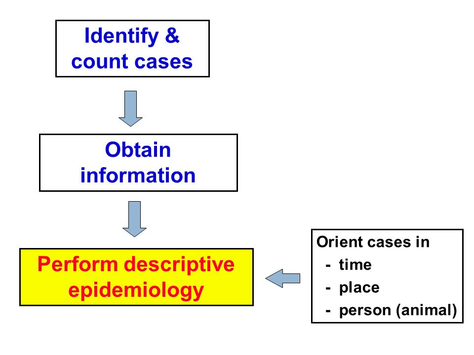 Identify & count cases Obtain information Perform descriptive epidemiology Orient cases in - time - place - person (animal)