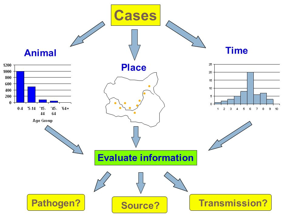 Animal Place Time Cases Evaluate information Pathogen? Source? Transmission?