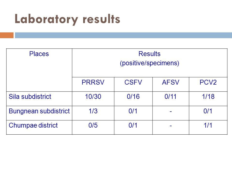 Laboratory results PlacesResults (positive/specimens) PRRSVCSFVAFSVPCV2 Sila subdistrict10/300/160/111/18 Bungnean subdistrict1/30/1- Chumpae district