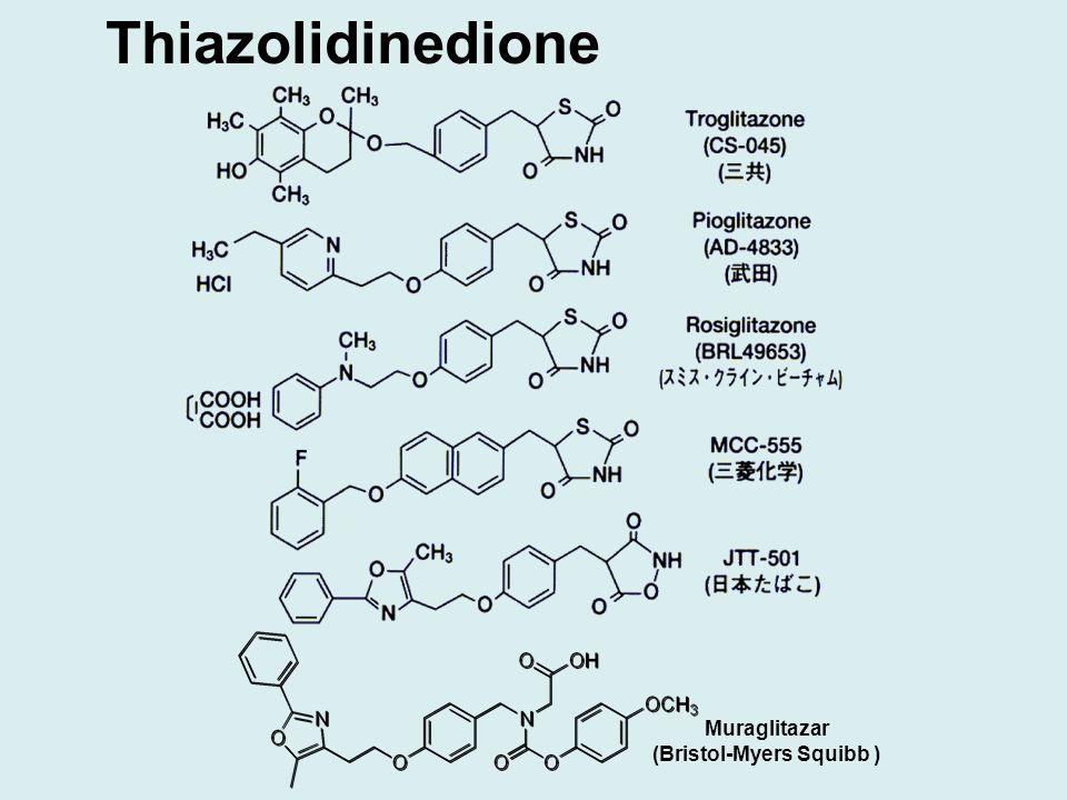 Thiazolidinedione Muraglitazar (Bristol-Myers Squibb )