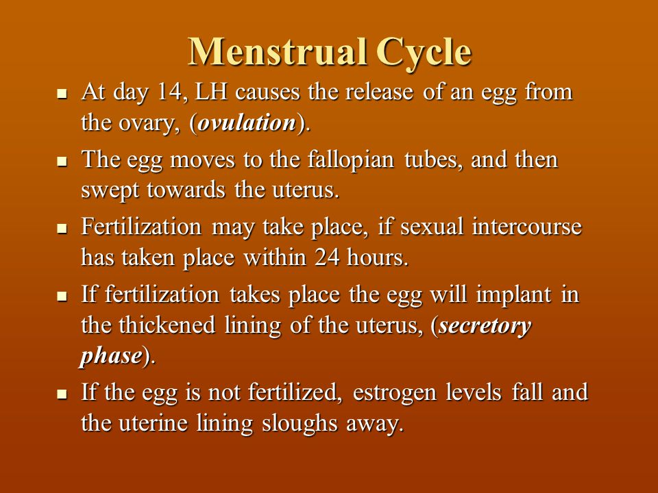 Menstrual Cycle At day 14, LH causes the release of an egg from the ovary, (ovulation). At day 14, LH causes the release of an egg from the ovary, (ov
