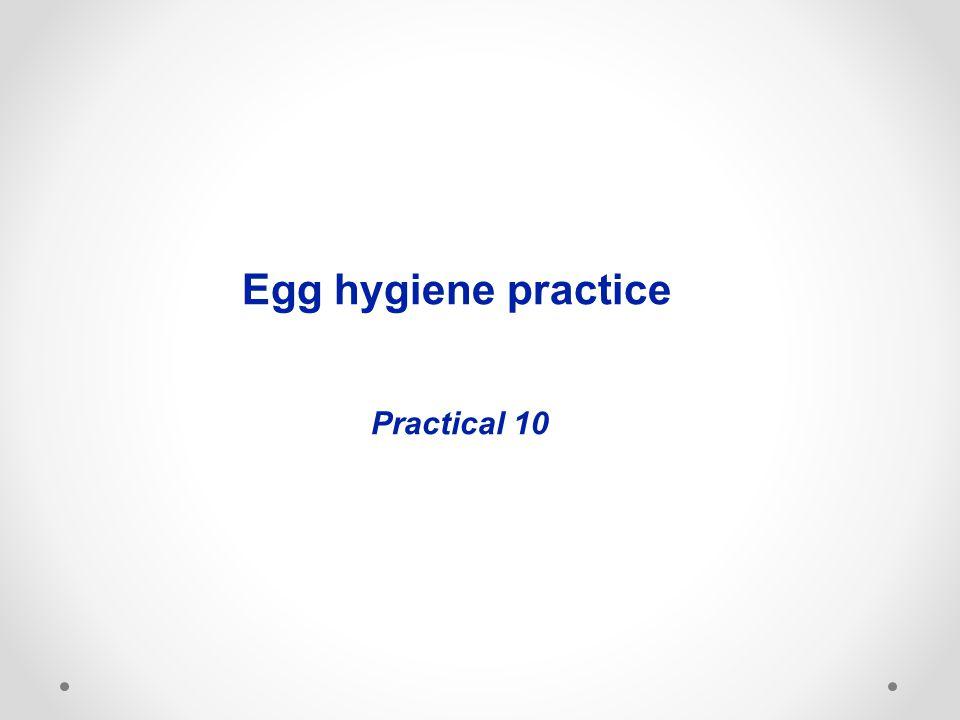 Egg hygiene practice Practical 10