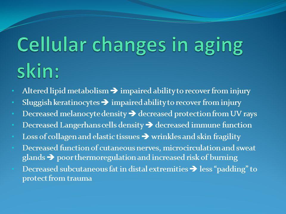 Fragile skin (skin tears, abrasions, cuts) Traumatic purpura (bruises) Ischemia (cell death, decubiti) Xerosis (dry skin) Infections Skin cancers