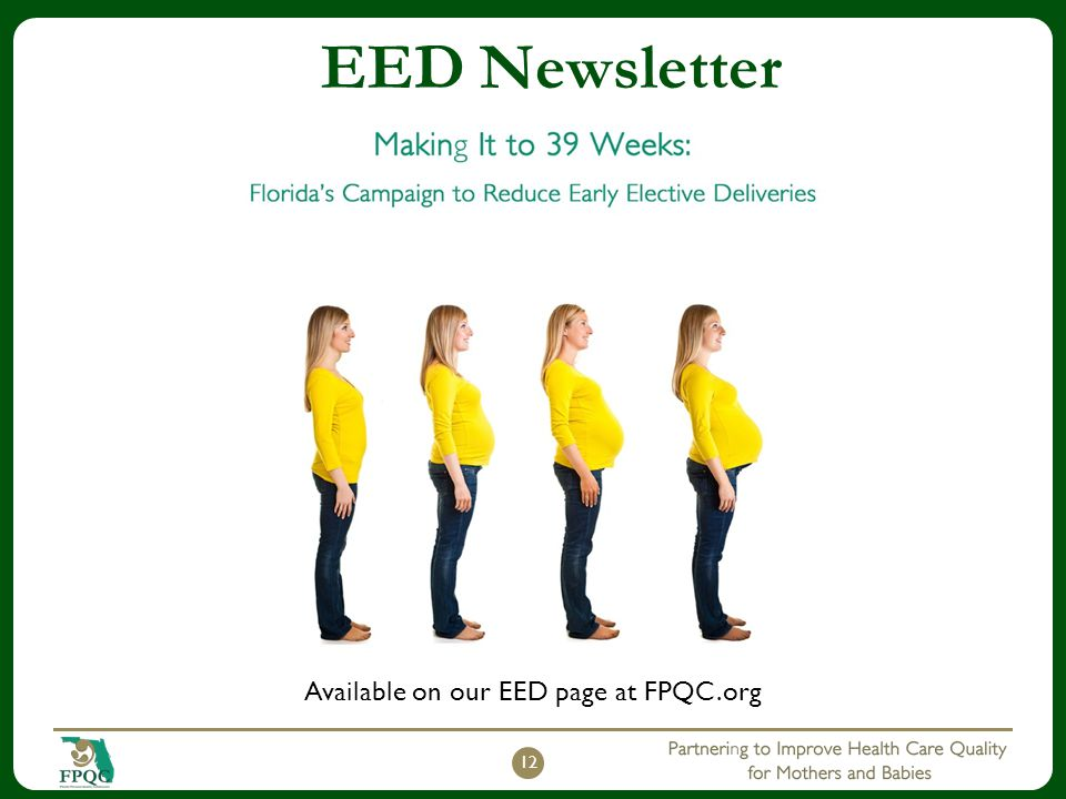 EED Newsletter Available on our EED page at FPQC.org 12