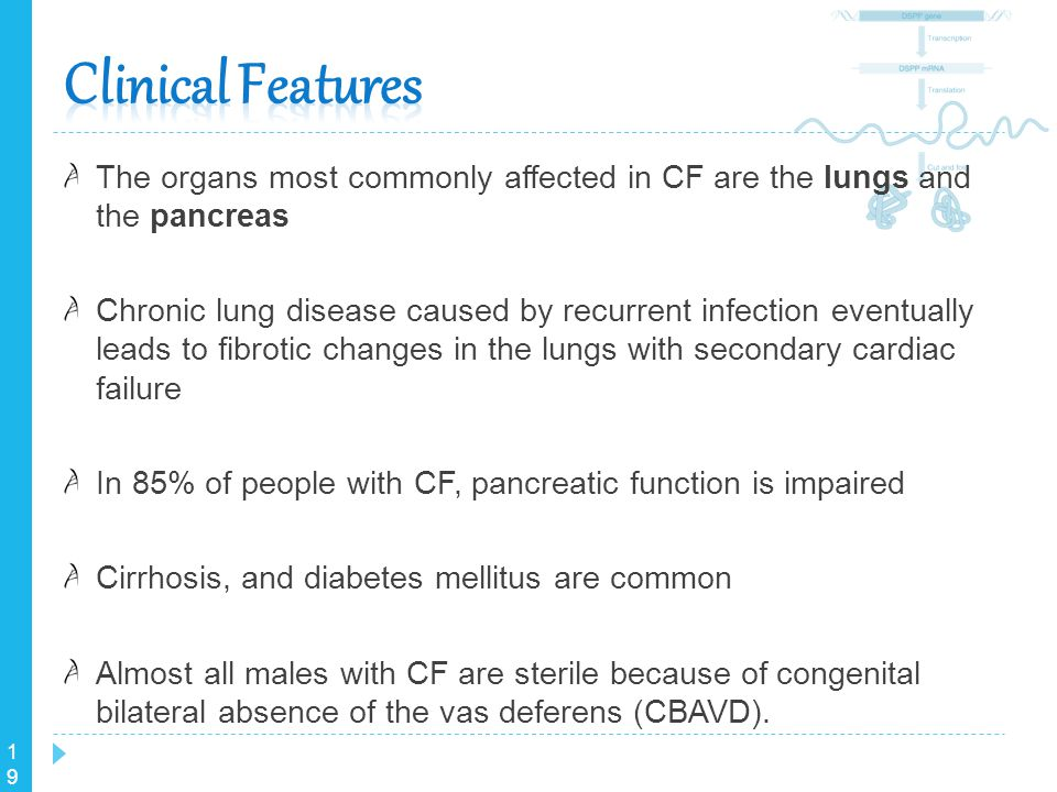 19 The organs most commonly affected in CF are the lungs and the pancreas Chronic lung disease caused by recurrent infection eventually leads to fibro