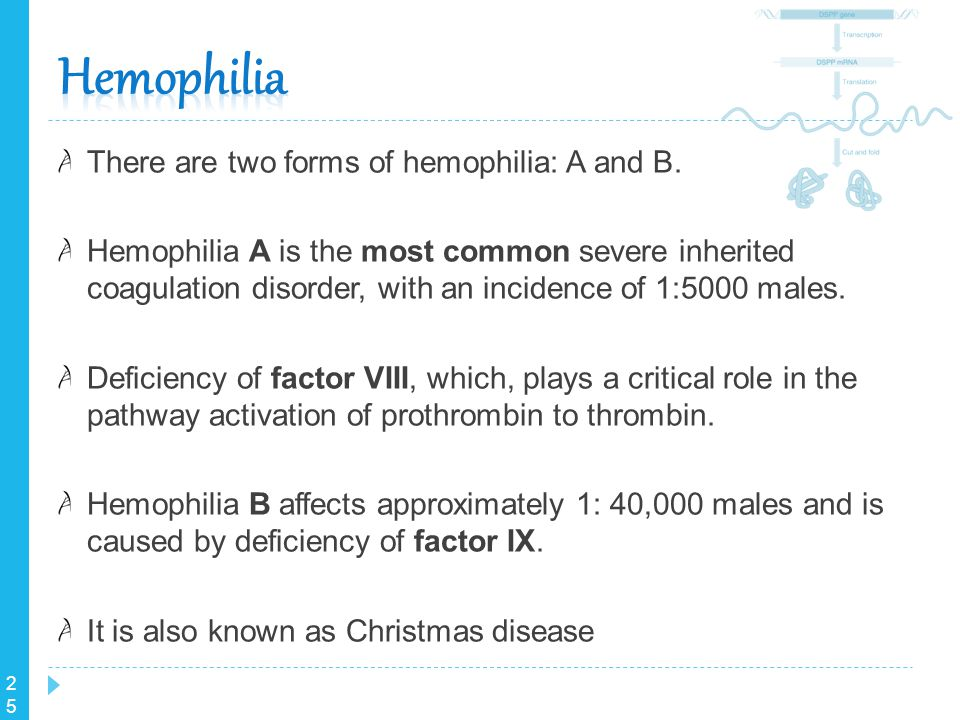 25 There are two forms of hemophilia: A and B. Hemophilia A is the most common severe inherited coagulation disorder, with an incidence of 1:5000 male