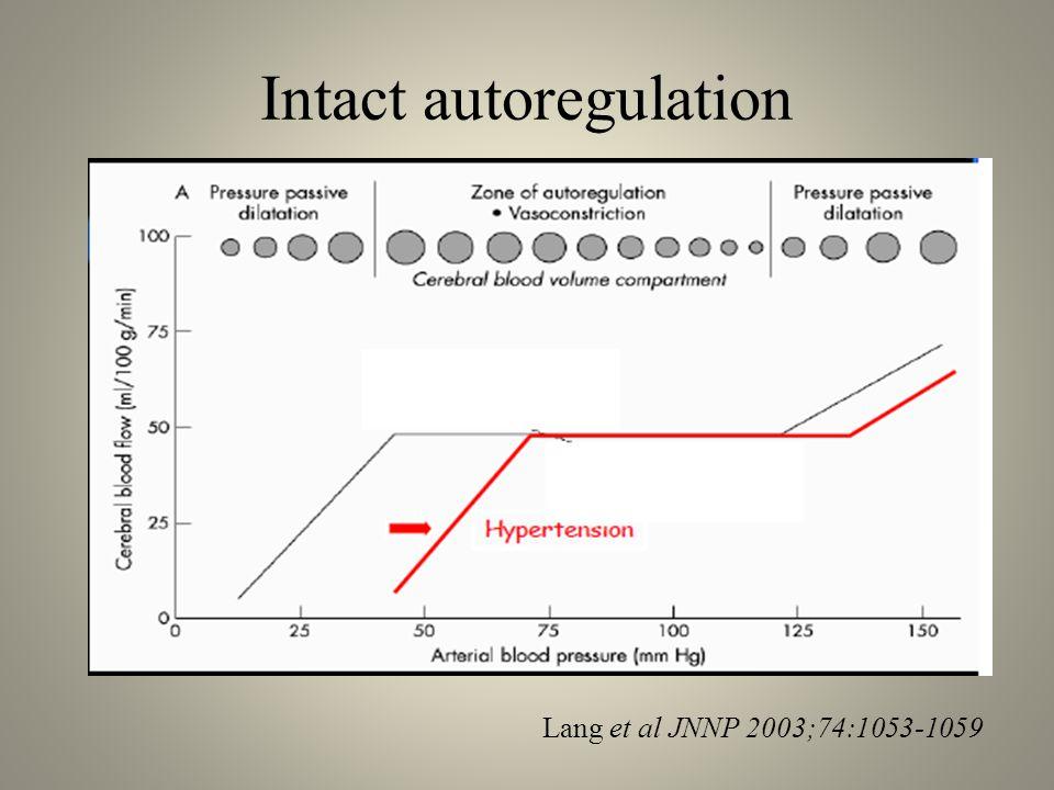 Lang et al JNNP 2003;74:1053-1059