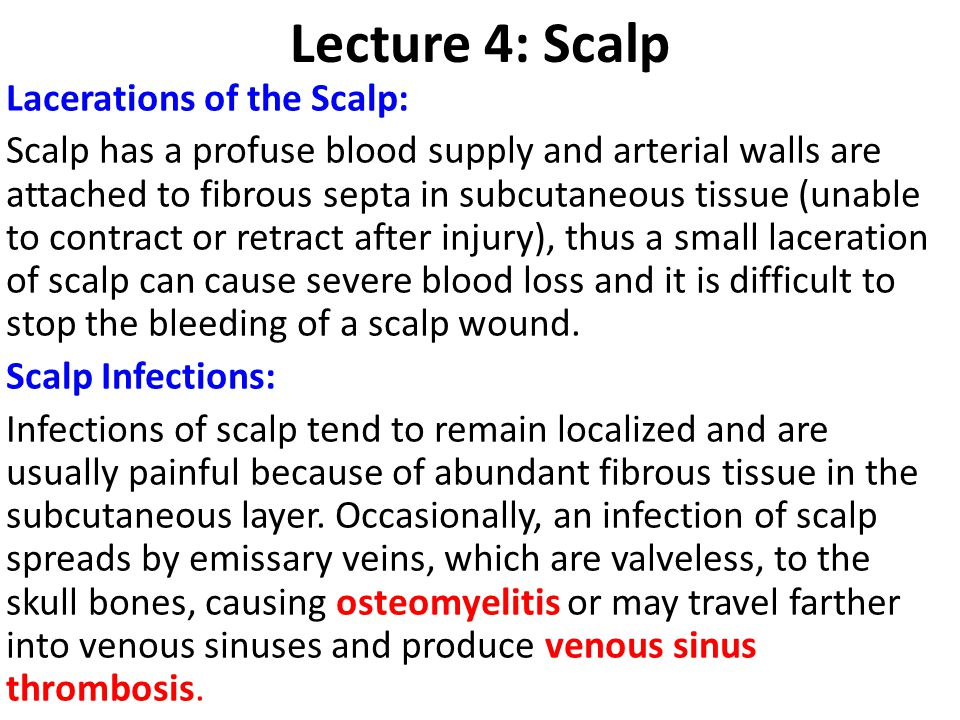 Lecture 4: Scalp Lacerations of the Scalp: Scalp has a profuse blood supply and arterial walls are attached to fibrous septa in subcutaneous tissue (u