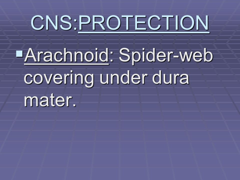 CNS:PROTECTION  Arachnoid: Spider-web covering under dura mater.