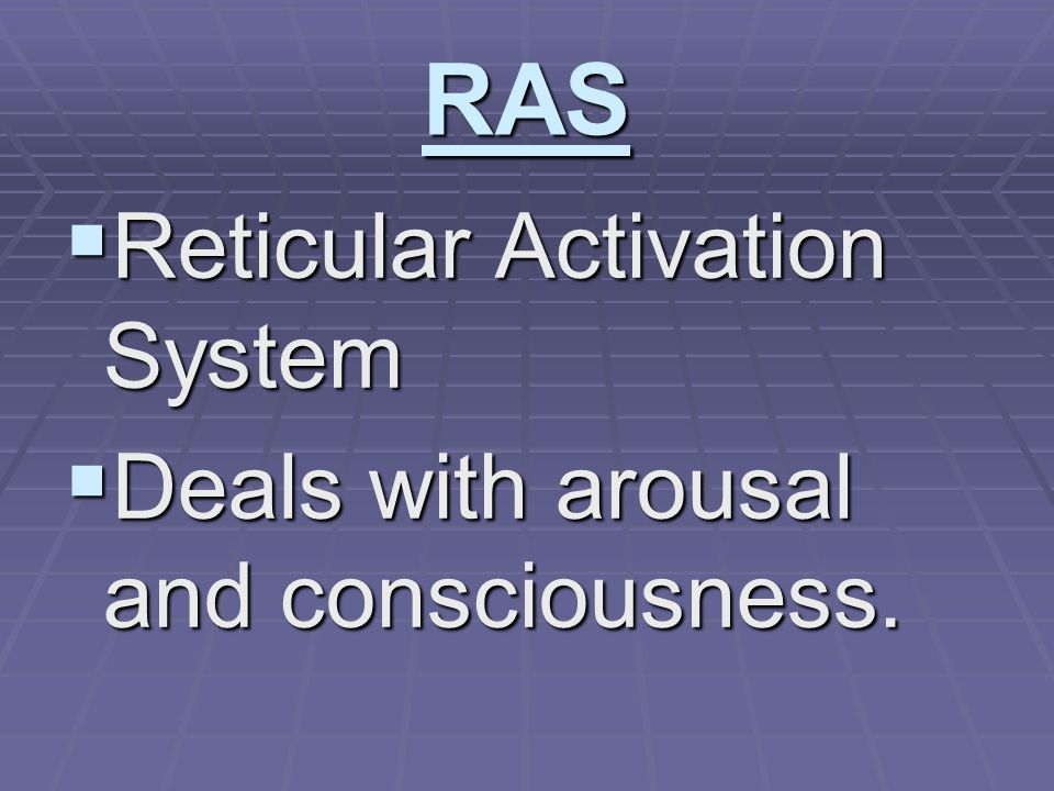 RAS  Reticular Activation System  Deals with arousal and consciousness.