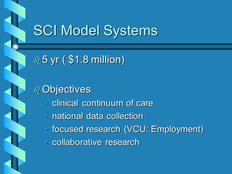 SCI Model Systems b 5 yr ( $1.8 million) b Objectives clinical continuum of careclinical continuum of care national data collectionnational data collection focused research (VCU: Employment)focused research (VCU: Employment) collaborative researchcollaborative research