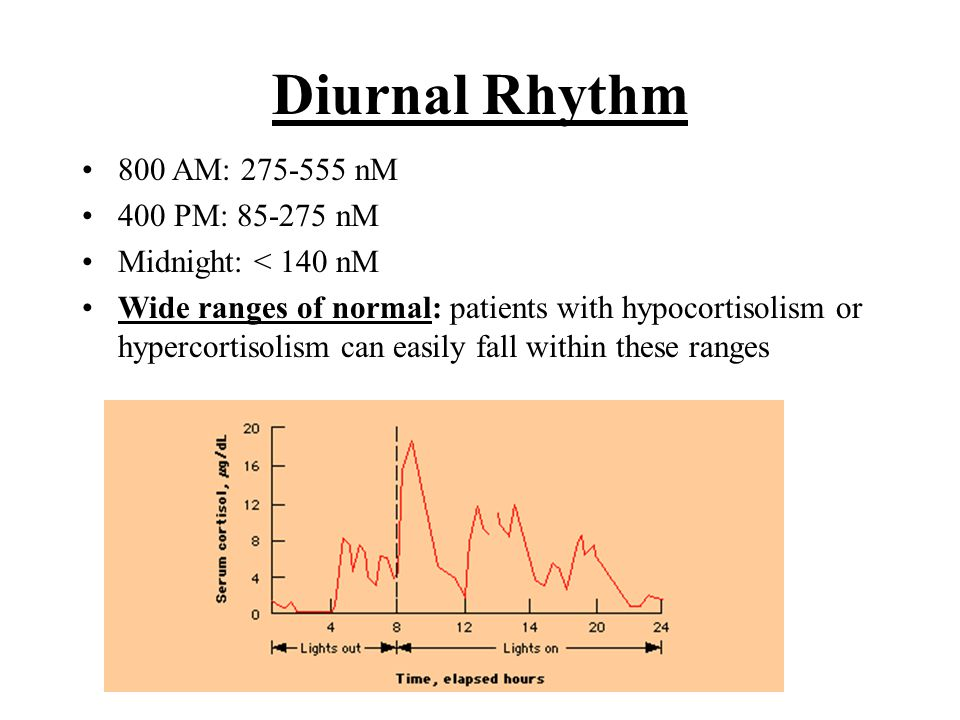 Diurnal Rhythm 800 AM: 275-555 nM 400 PM: 85-275 nM Midnight: < 140 nM Wide ranges of normal: patients with hypocortisolism or hypercortisolism can ea