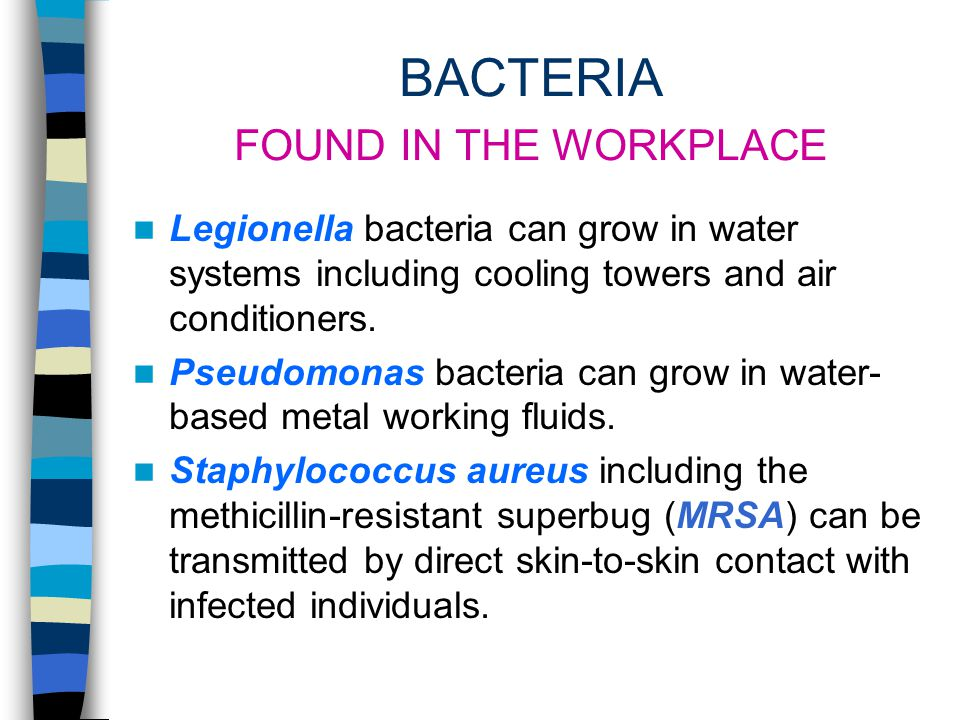 BACTERIA FOUND IN THE WORKPLACE Legionella bacteria can grow in water systems including cooling towers and air conditioners.
