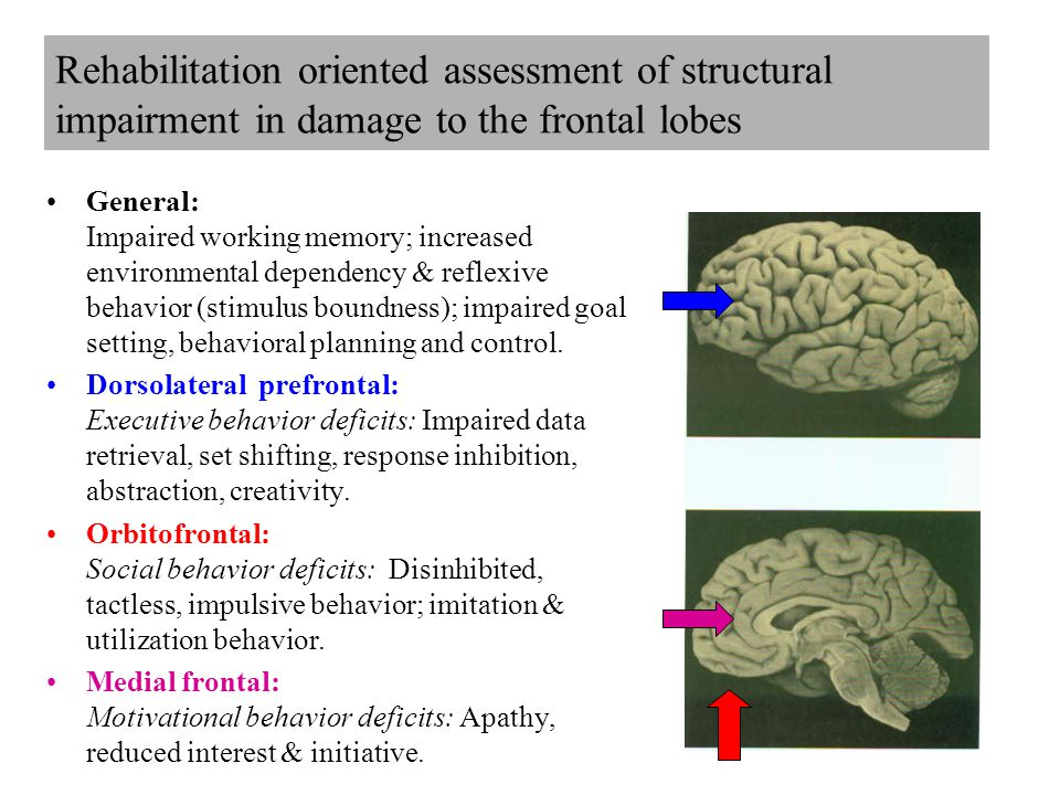Rehabilitation oriented assessment of structural impairment in damage to the frontal lobes General: Impaired working memory; increased environmental dependency & reflexive behavior (stimulus boundness); impaired goal setting, behavioral planning and control.