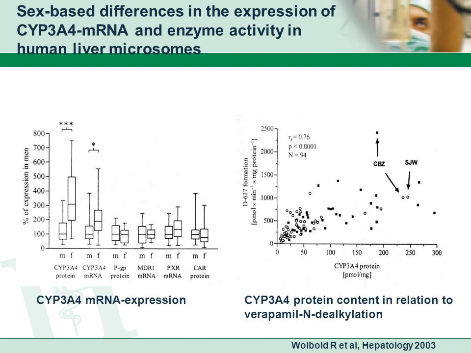 Sex-based differences in the expression of CYP3A4-mRNA and enzyme activity in human liver microsomes Wolbold R et al, Hepatology 2003 CYP3A4 mRNA-expressionCYP3A4 protein content in relation to verapamil-N-dealkylation