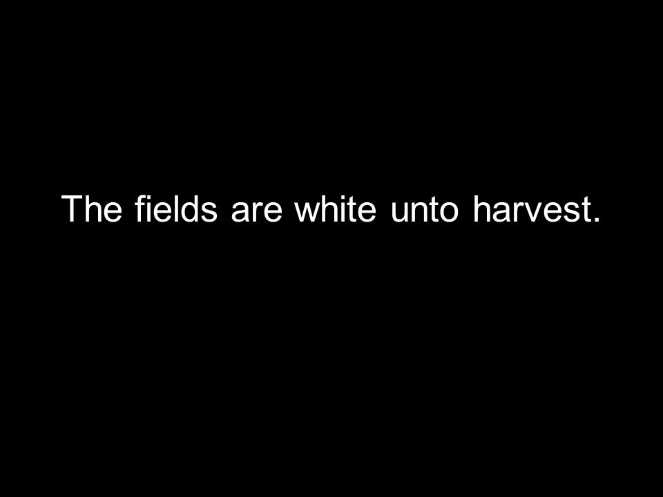 The fields are white unto harvest.