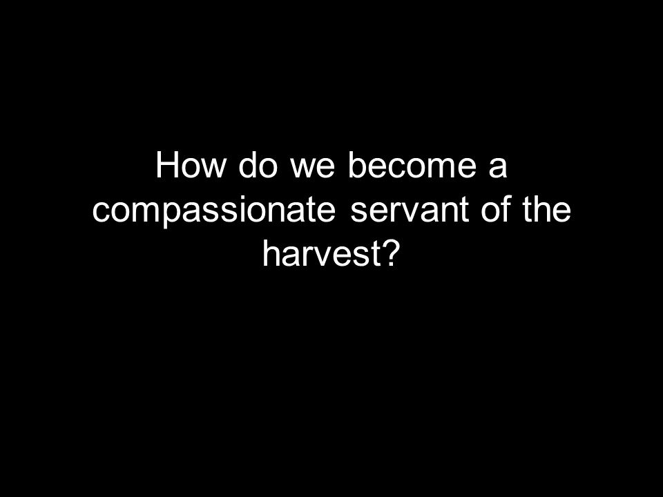How do we become a compassionate servant of the harvest