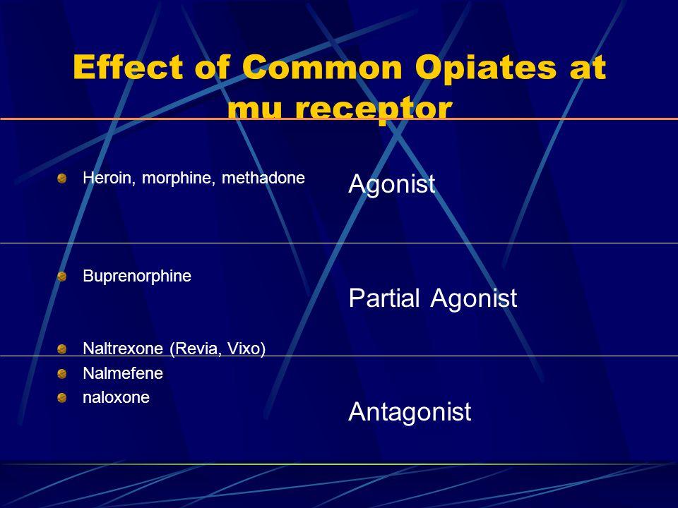 Effect of Common Opiates at mu receptor Heroin, morphine, methadone Buprenorphine Naltrexone (Revia, Vixo) Nalmefene naloxone Agonist Partial Agonist Antagonist