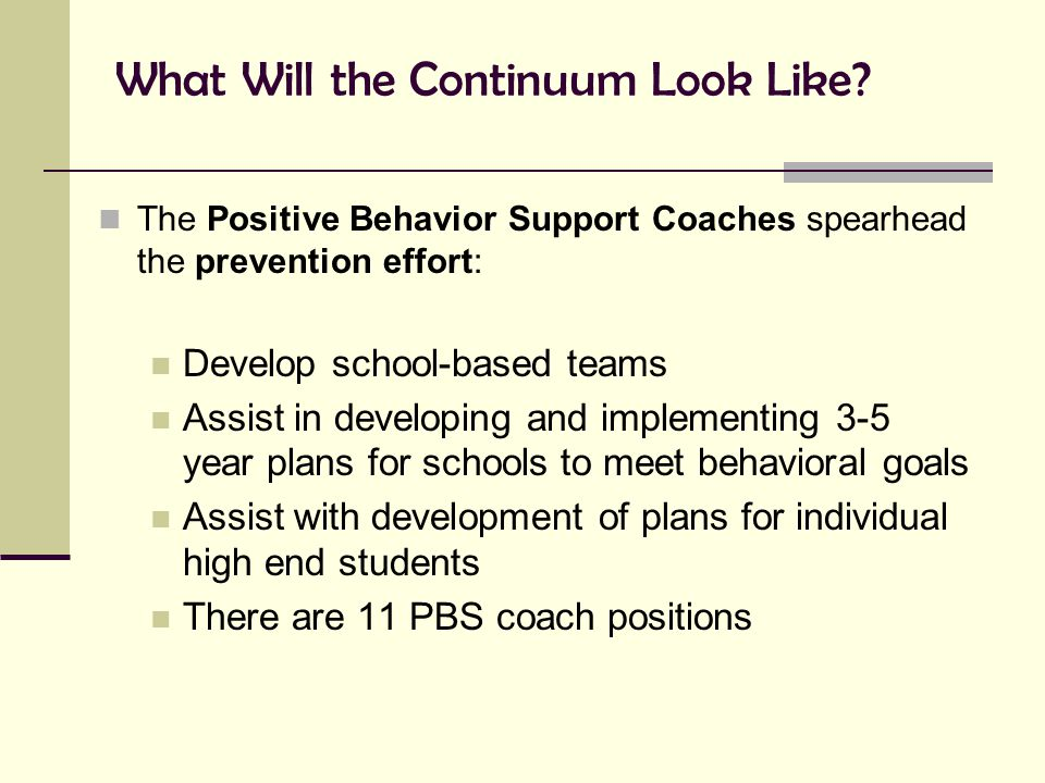 What Will the Continuum Look Like? The Positive Behavior Support Coaches spearhead the prevention effort: Develop school-based teams Assist in develop