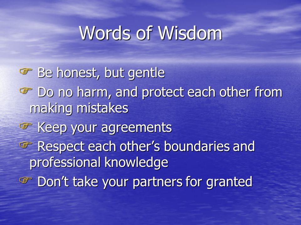 Words of Wisdom  Be honest, but gentle  Do no harm, and protect each other from making mistakes  Keep your agreements  Respect each other's boundaries and professional knowledge  Don't take your partners for granted