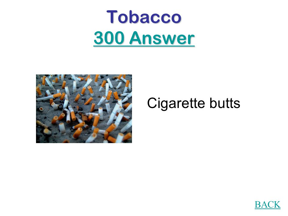 Tobacco 300 Question During a litter clean-up day , what is collected the most?