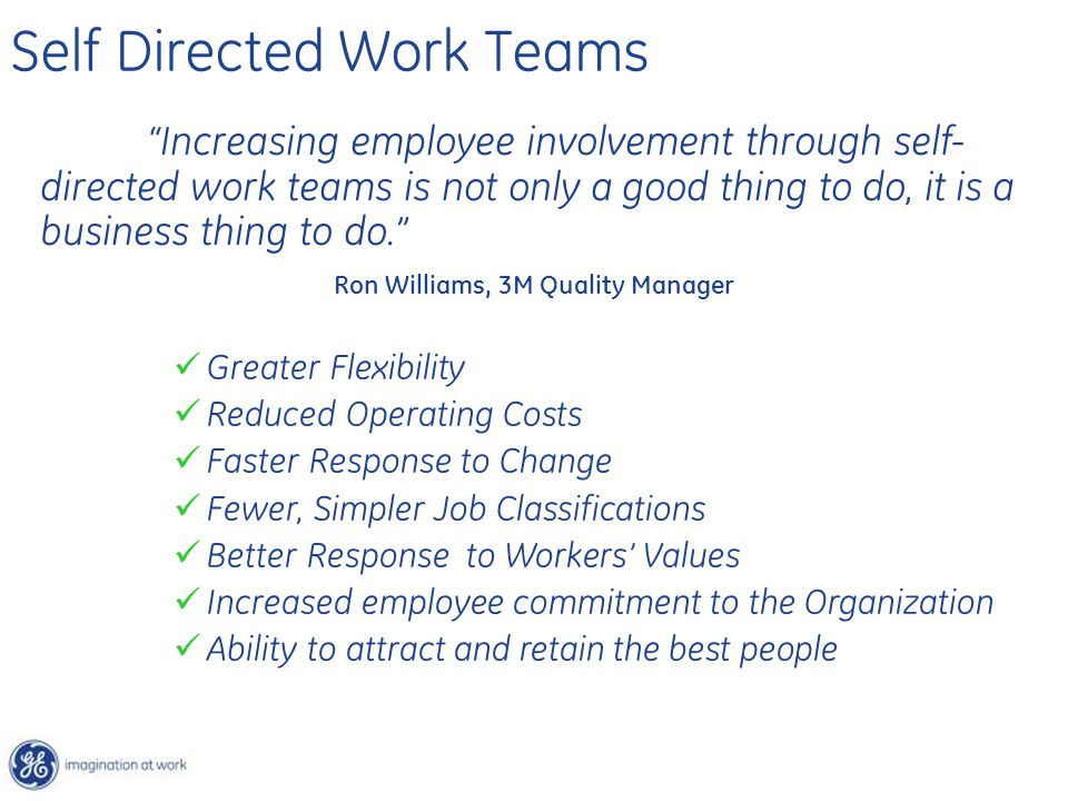 """Self Directed Work Teams """"Increasing employee involvement through self- directed work teams is not only a good thing to do, it is a business thing to"""