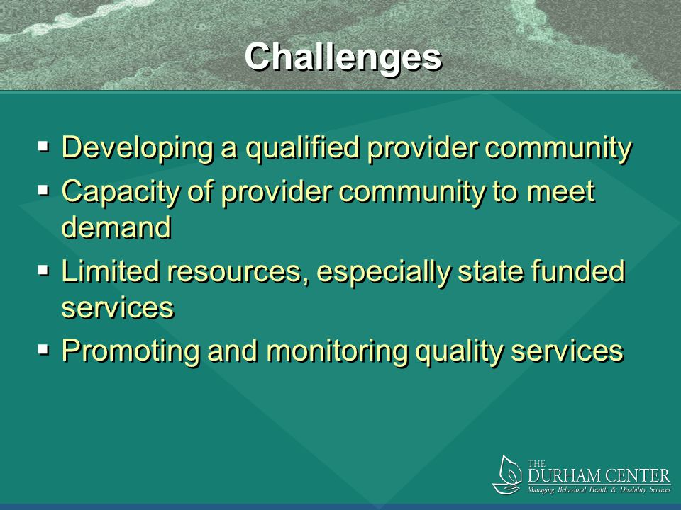 Challenges  Developing a qualified provider community  Capacity of provider community to meet demand  Limited resources, especially state funded services  Promoting and monitoring quality services  Developing a qualified provider community  Capacity of provider community to meet demand  Limited resources, especially state funded services  Promoting and monitoring quality services
