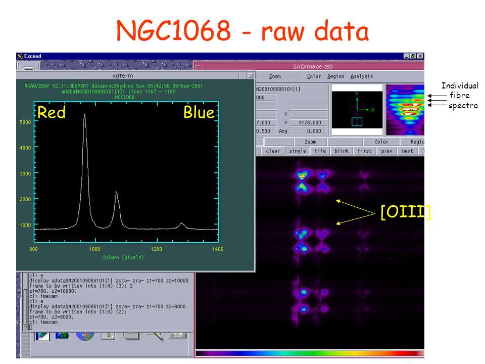 [OIII] RedBlue Individual fibre spectra NGC1068 - raw data