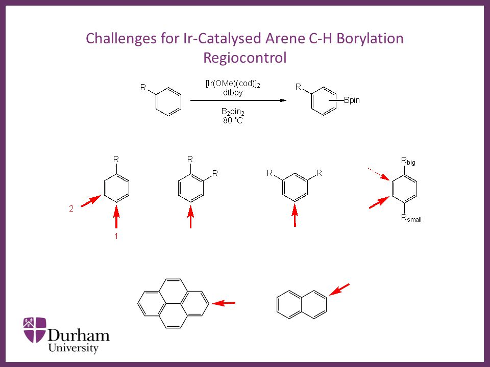 ∂ Challenges for Ir-Catalysed Arene C-H Borylation Regiocontrol