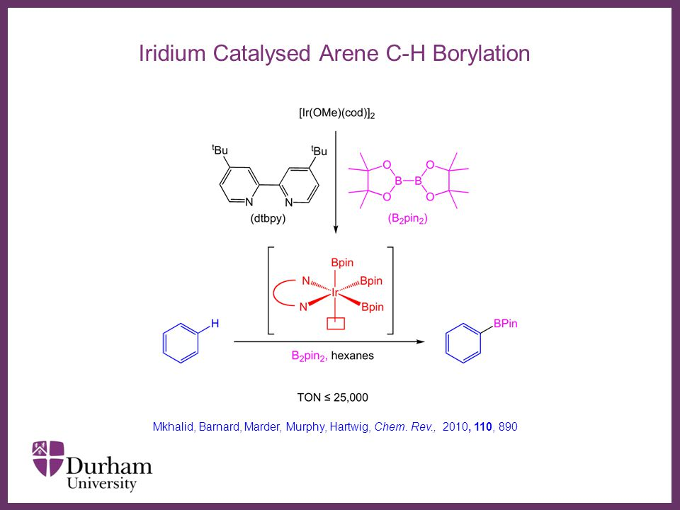 ∂ Iridium Catalysed Arene C-H Borylation Mkhalid, Barnard, Marder, Murphy, Hartwig, Chem.