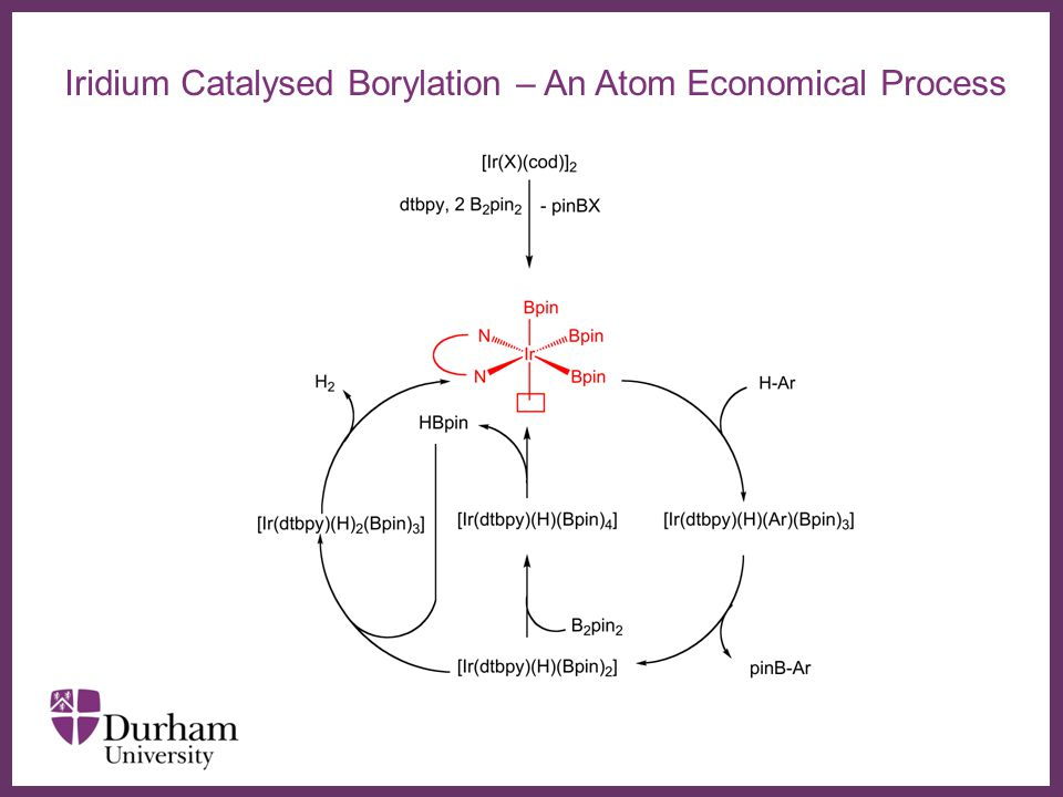 ∂ Iridium Catalysed Borylation – An Atom Economical Process