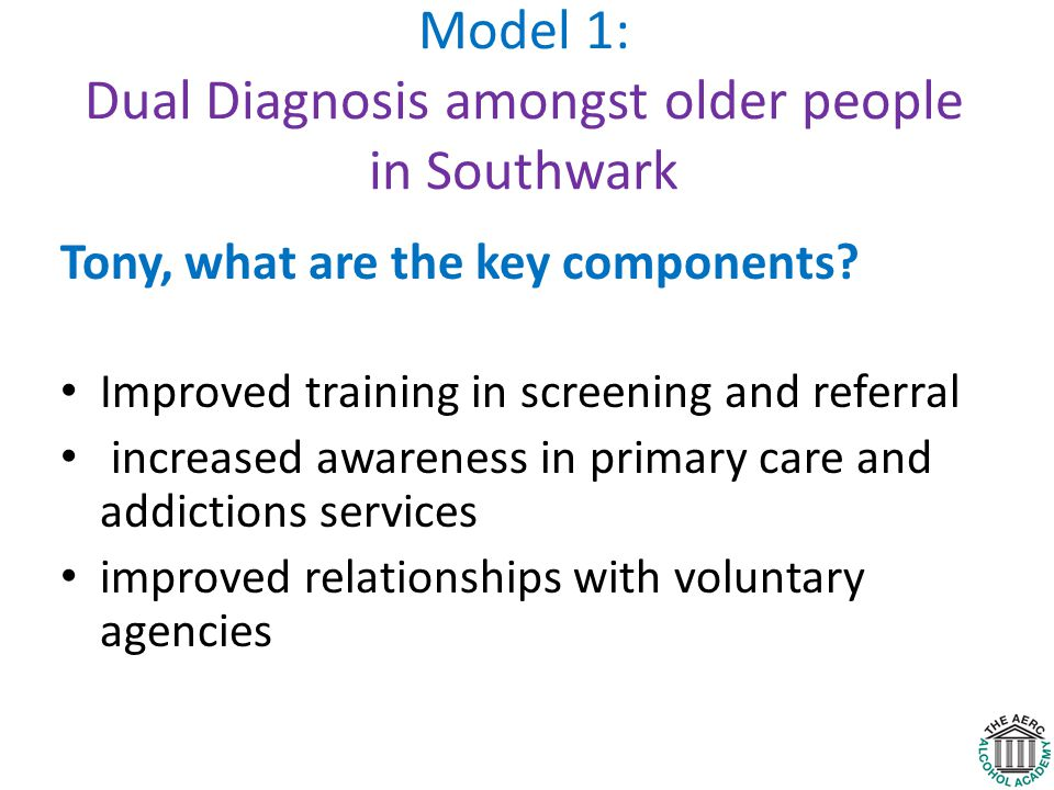 Model 1: Dual Diagnosis amongst older people in Southwark Tony, what are the key components.