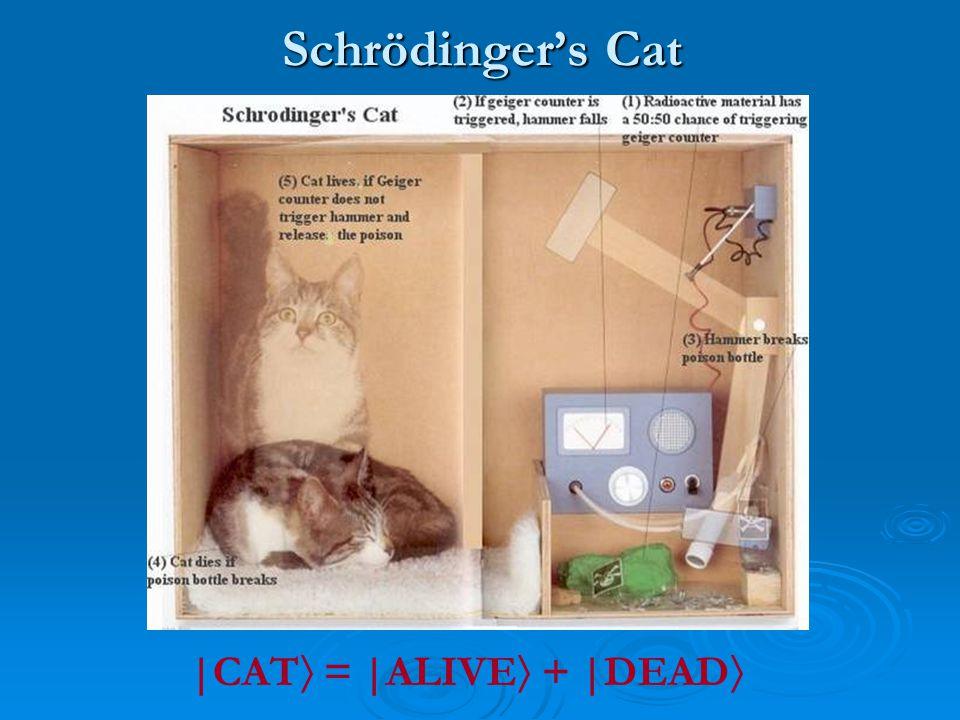 Schrödinger's Cat |CAT  = |ALIVE  + |DEAD 